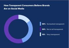 Transparency, Emerging Social Media Issue
