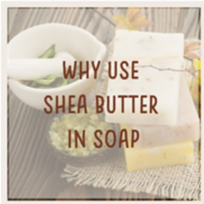 Why Use Shea Butter in Soap … Tips and More!