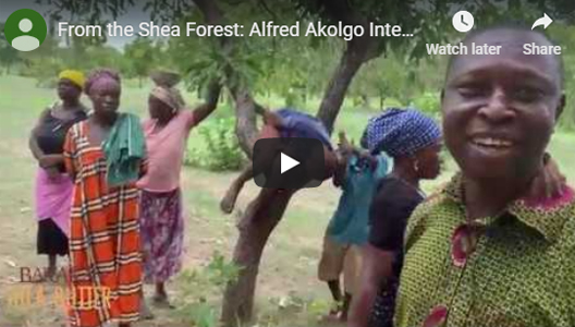 From the Shea Forest: Alfred Akolgo Interview