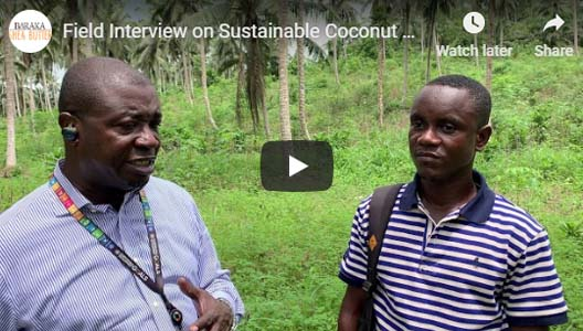 Field Interview on Sustainable Coconut Farm Management