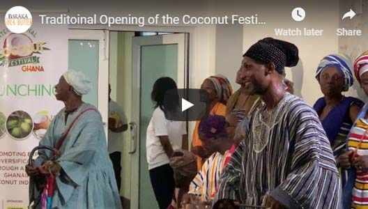 Traditional Opening of the Coconut Festival