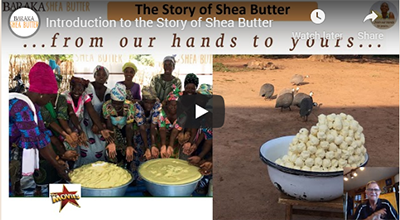 Introduction to the Story of Shea Butter