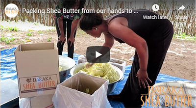Packing Shea Butter from our hands to yours